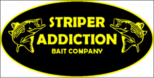 BIG FISH ON Lake Lanier Fishing Guide Sponsor Striper Addication Bait Company